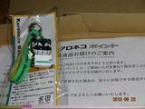 DSC01205